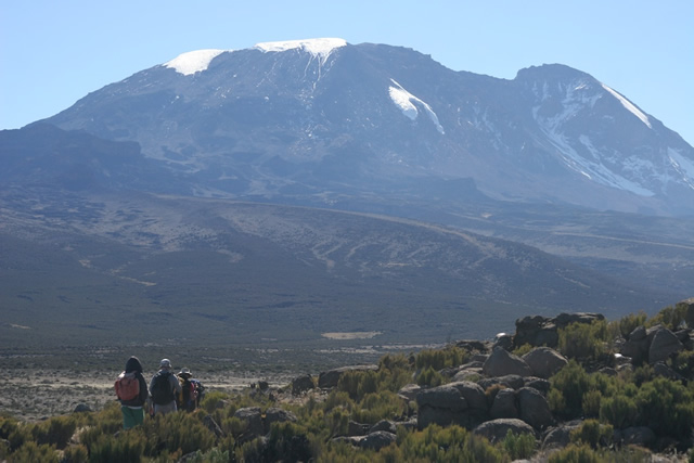 Kilimanjaro G 3