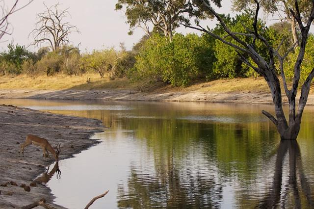 Botswana 18