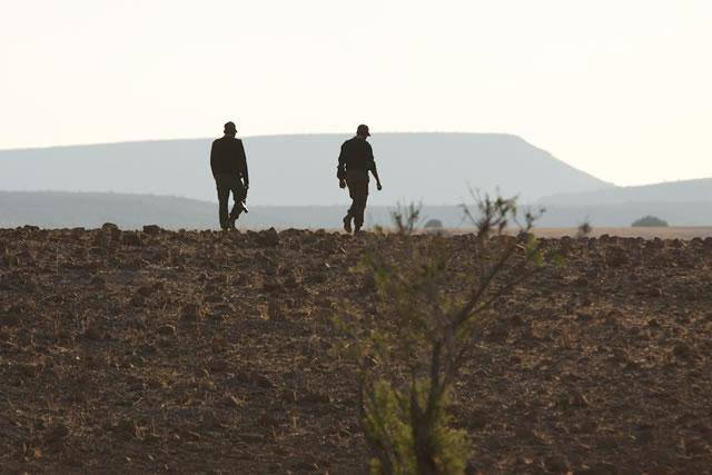 Desert Rhino 11