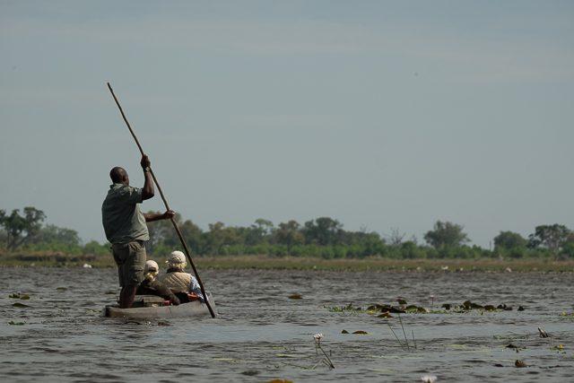 mokoro ride in the Delta 3