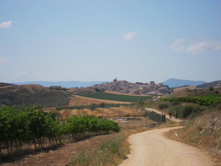 Camino (11)