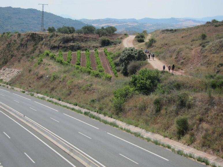 Camino (13)