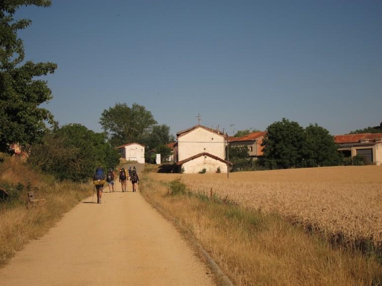 Camino (16)