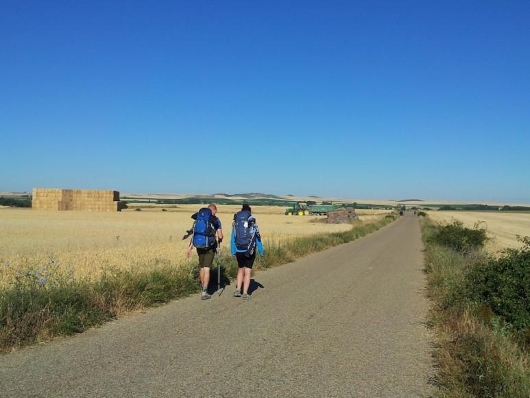 Camino (27)
