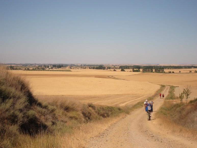 Camino (29)