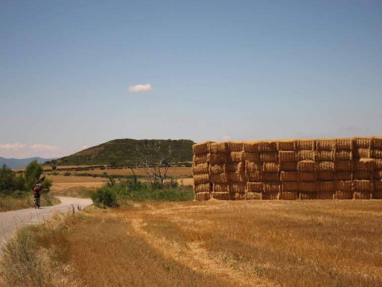 Camino (3)