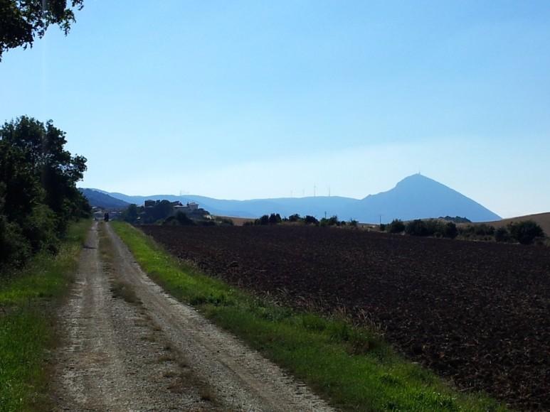 Camino (7)