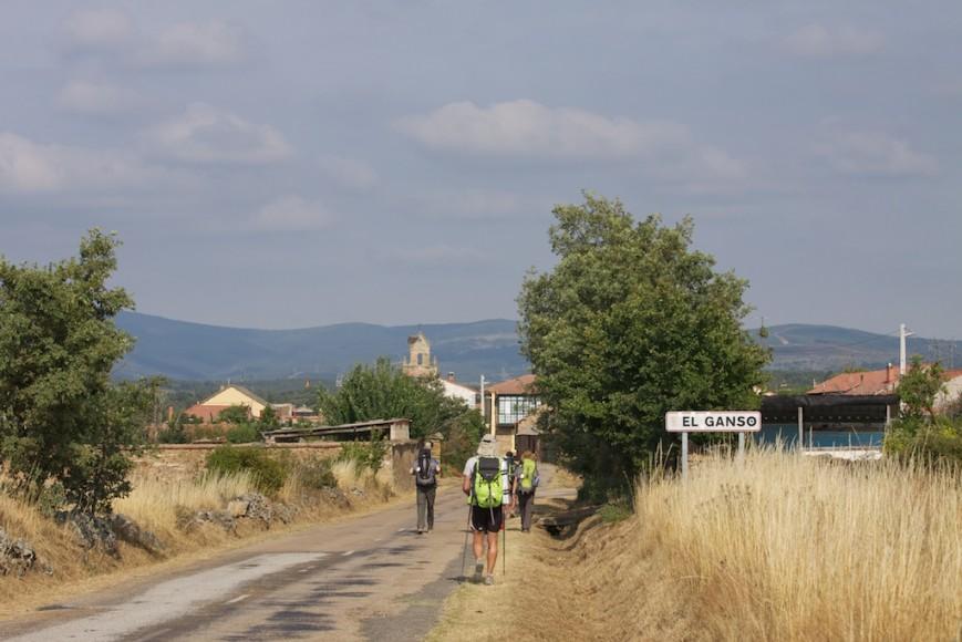 Camino de Santiago (24)