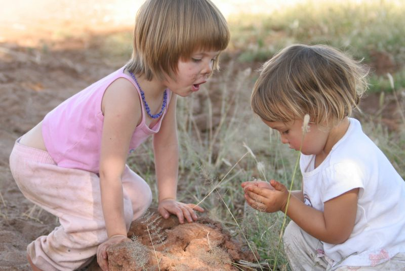 Jordy and Olly examining a termite colony