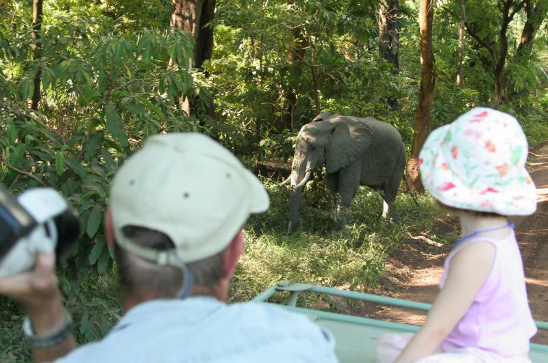 Dave and Jordy watching an elephant feeding