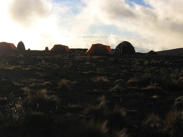 Kilimanjaro G 26