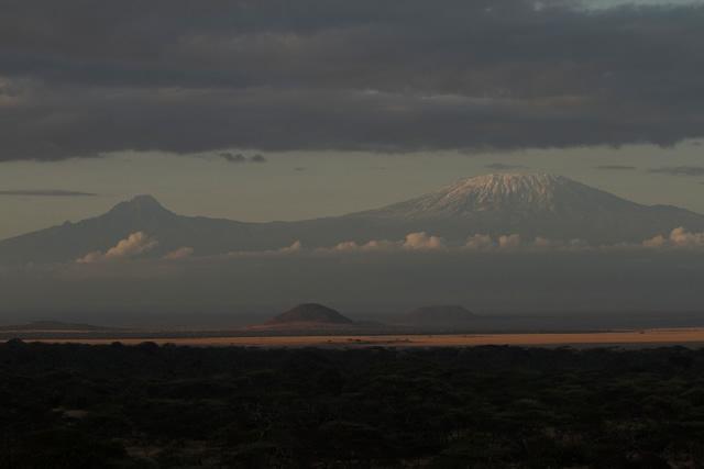 Kilimanjaro G 36