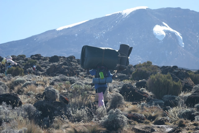 Kilimanjaro G 4