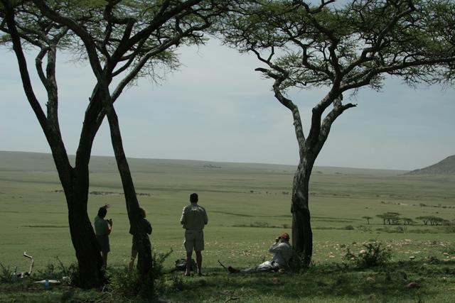 Tanzania 3