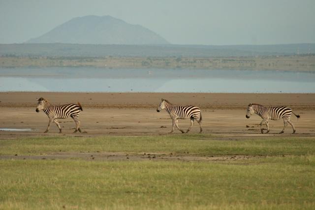 Tanzania 39
