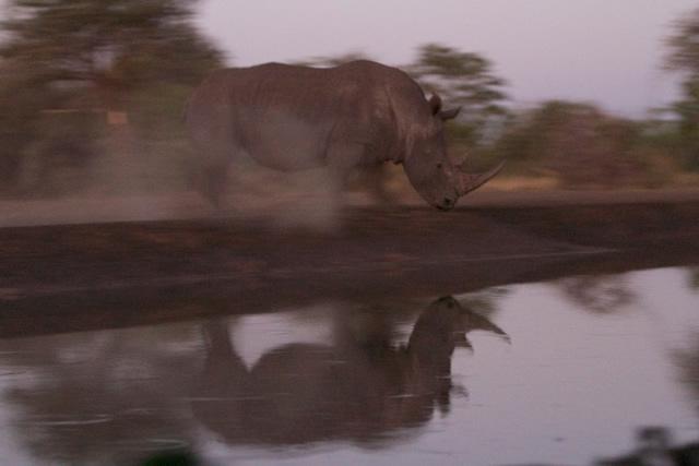 Zimbabwe (27)