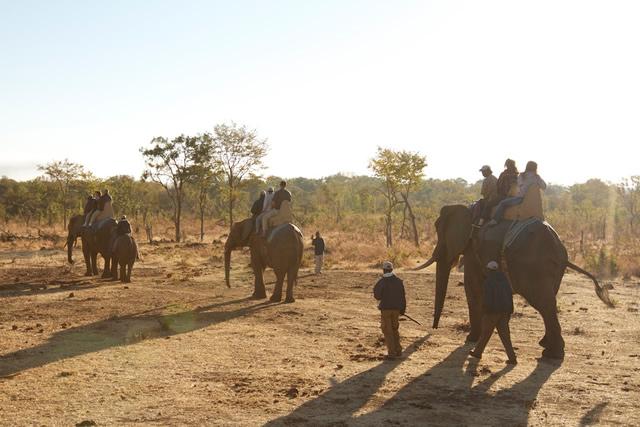 Zimbabwe (38)