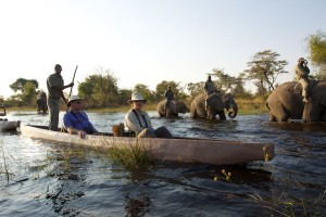 Mokoro ride with elephants