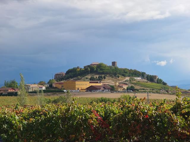 Basque (41)