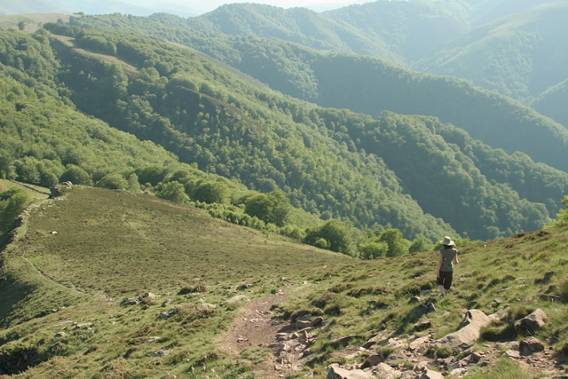 Pyrenees (14)