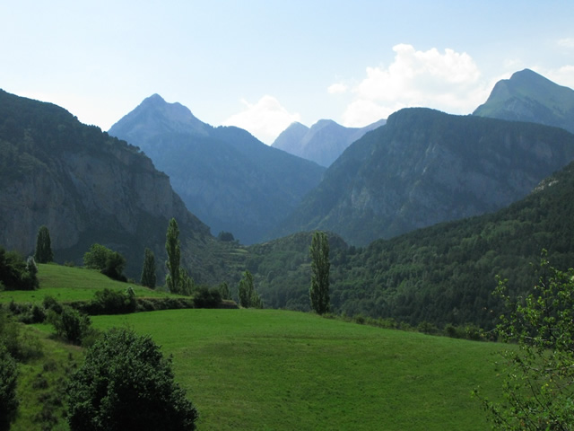 Pyrenees (23)