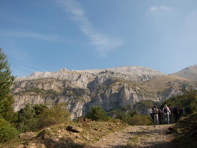 Pyrenees (43)