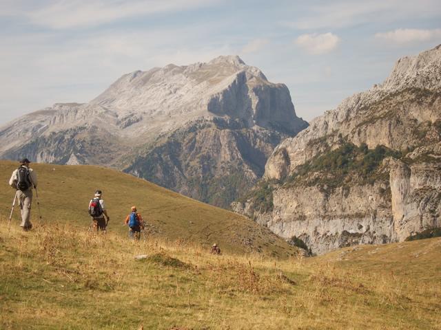Pyrenees (44)