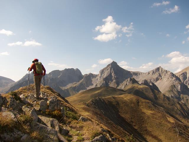 Pyrenees (47)