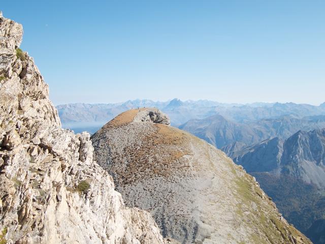 Pyrenees (50)