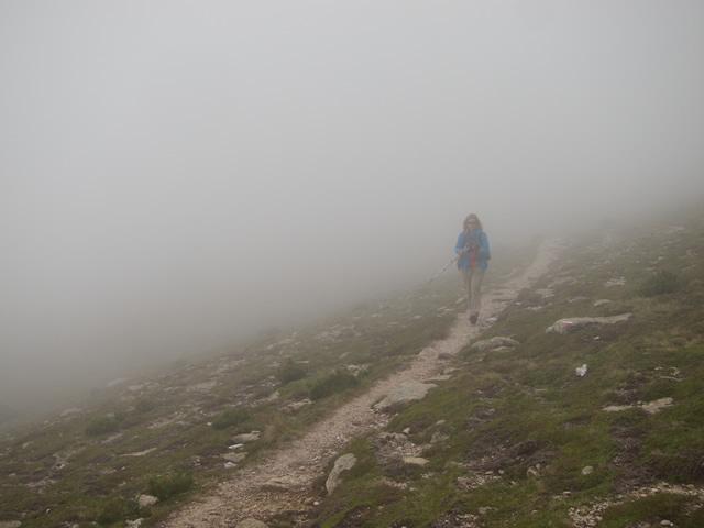 Pyrenees (57)