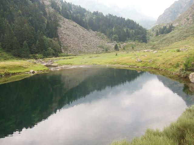 Pyrenees (61)
