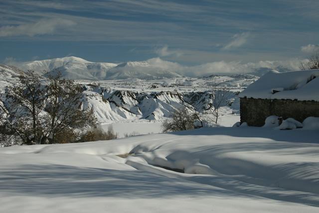 Pyrenees (9)