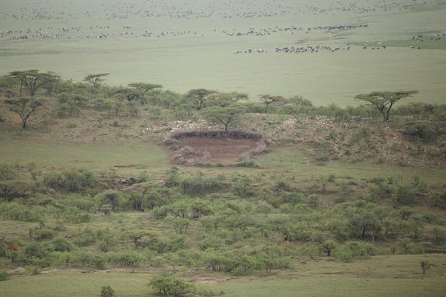 A Maasai boma