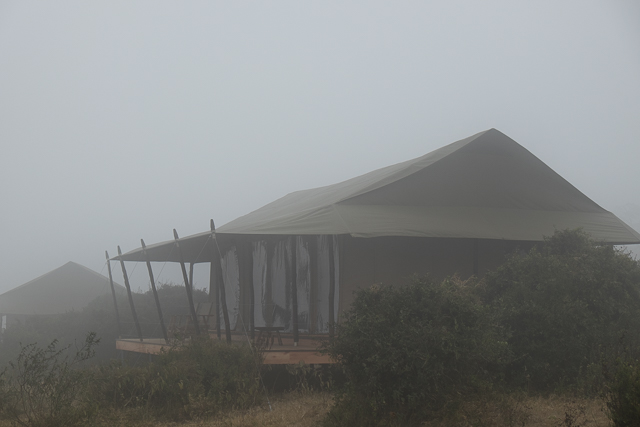 Entamanu Camp on a misty morning