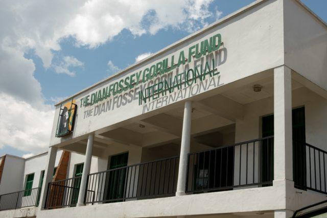 Gorilla Fund museum