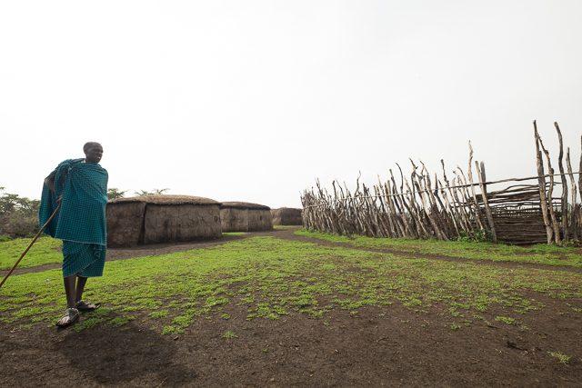 Maasai village_DSF9594
