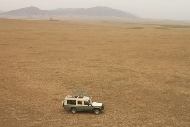 Serengeti game drive